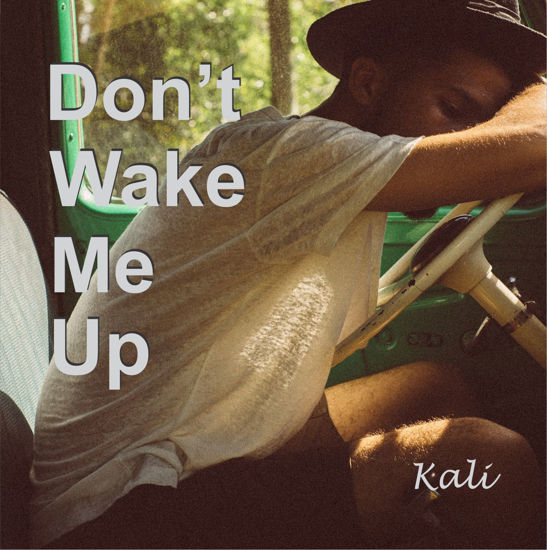 Picture of Kali Sanna - Don't Wake Me Up